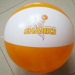 Beach balls 45cm / 17.5 inch with custom logo image